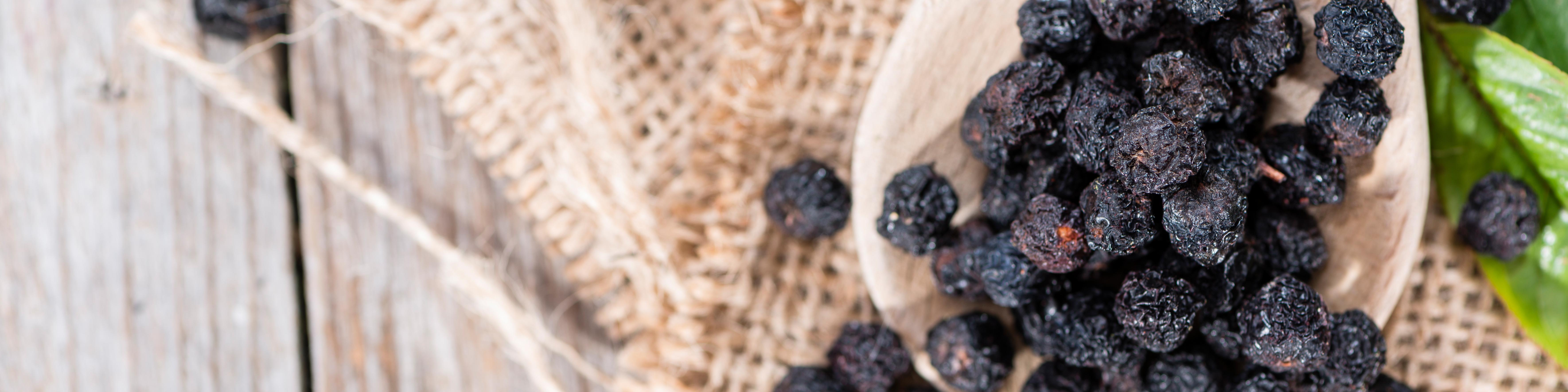 backaldrin, Handmade, Heidelbeeren